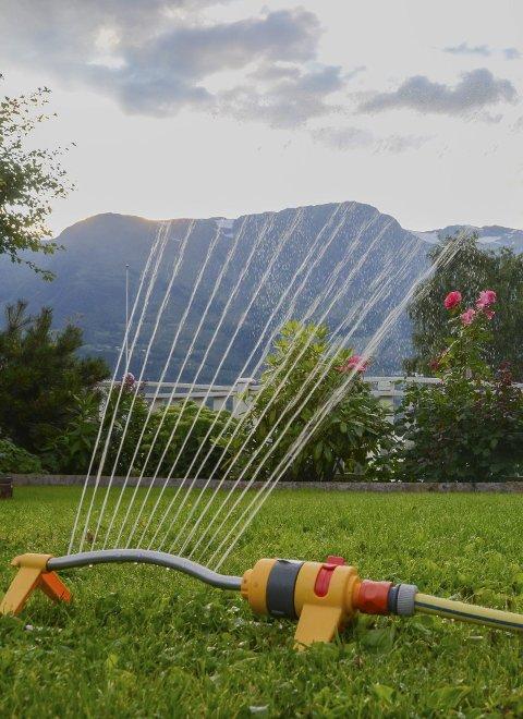 Vatning: Mange fekk vatne-forbod sist sommar. Arkivfoto