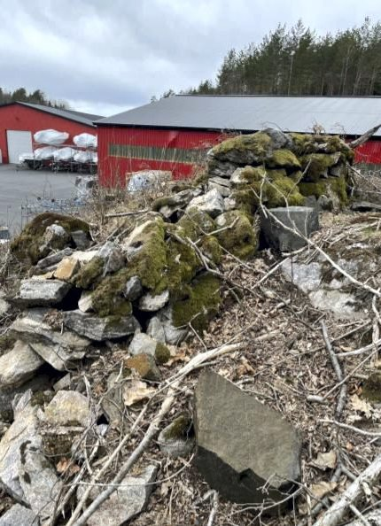 Ved Eidbo: Hans Tomter lurer på om dette gamle steingjerdet kan være et fredet kulturminne. Gjerdet vil ifølge Tomter bli sprengt vekk i forbindelse med bygging av opplagshall. Privat foto