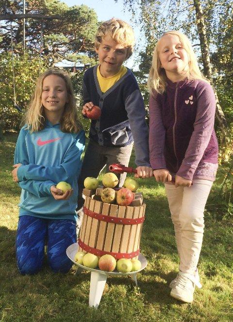 PLUKKER OG PRESSER: Signe Linnea (f.v.), Håkon Mathias og Alma Marie Moen plukker sammen med sine foreldre Marita Susan og Lars-Gøran Moen epler og pærer til hjemmebruk.