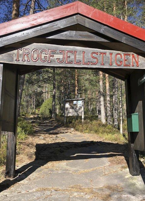 Utgangspunkt: Timmeråsen ligger på veien opp til  Trogfjell. Fra Timmeråsen er det fin utsikt ned mot bygda.