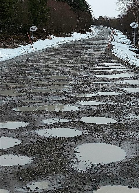 DÅRLIG VEISTANDARD: – Det ser ut som bombehull, sier Håkon Ryvoll om veistandarden langs Valvågveien på Senja.