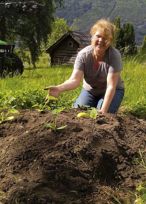 GRØNNSAKSDYRKING: Her er Nina ved «squashhaugen». Elevane har laga ein komposthaug med jord øvst som skal vera supert for squashplaner.