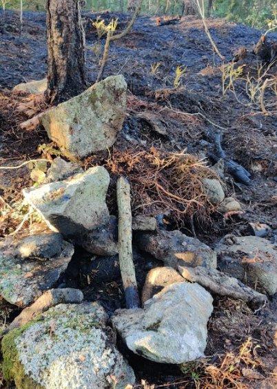 Noen hadde tent bål i den knusktørre skogen ved Honningen tirsdag. Det gikk ikke bra.