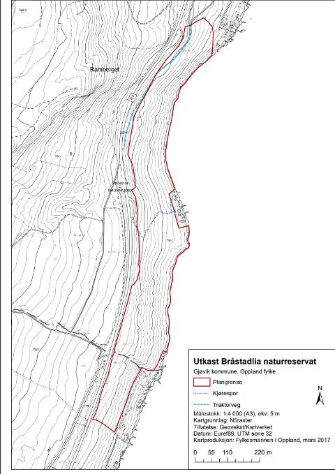 BRATT LI  VED MJØSA: Bråstadlia, som er foreslått vernet, er en relativt bratt li fem kilometer nord for Gjøvik, øst for Ramberget, mellom riksveg 4 og Mjøsa.