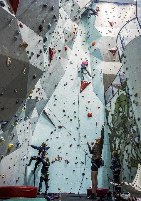 16 meter høyt: Helt øverst henger Anders Lindskog, med Marco Andiselic like bak. På gulvet veiver Arve Langøy ivrig med hendene, mens Baste Andiselic (t.h) følger spent med. Hege Hoås Lier (46) og Anna Olsen (39) (t.v) er også i gang med å bestige veggen.