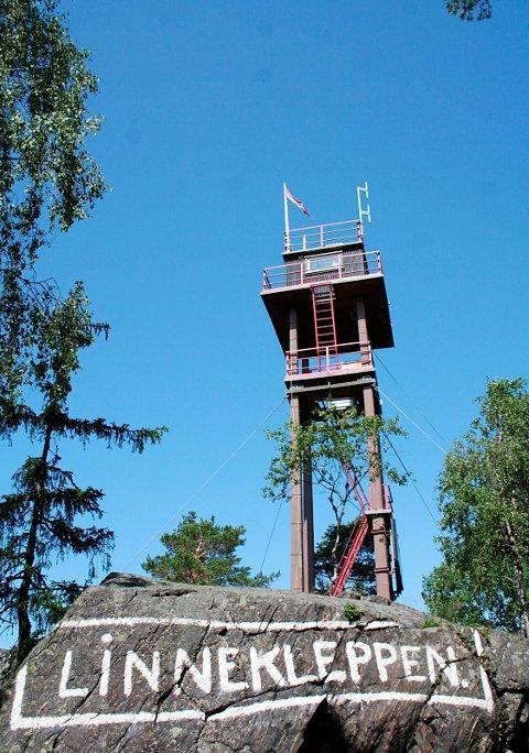 Vil opp: De besøkende trekker spesielt fram muligheten for å komme opp i tårnet.