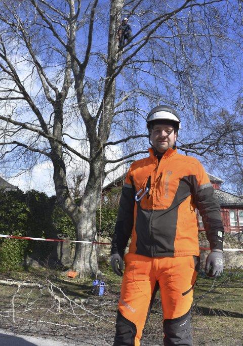 LIDENSKAP: Stachowicz Hubert er sertifisert arborist og flyttet fra Polen til Kristiansund for tre år siden. Oppe i den gamle blodbøken sitter kollega Brian Andersen med motorsaga.