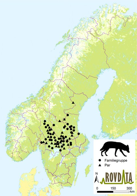 Kartet gir en oversikt over ulveflokker og par som er registrert i Skandinavia vinteren 2015/2016.