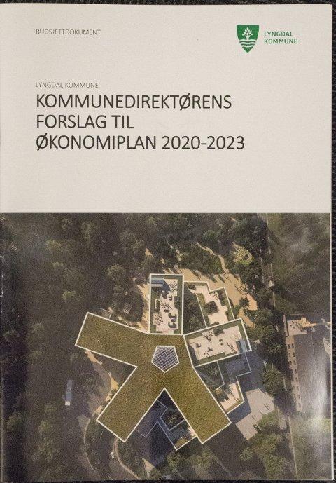 KRITISK: Steinar Fuglestveit er sterkt kritisk til de høye lønnskostnadene i rådmannens ledergruppe som forslaget til kommunebudsjett legger opp til.