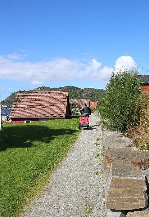 Ein nabo til turstien langs sjøen på Tau fortel at sykkelpendlarar kjem i stor fart på den nye stien. Syklisten på bildet er for øvrig ikkje eit av desse fartsfantoma.