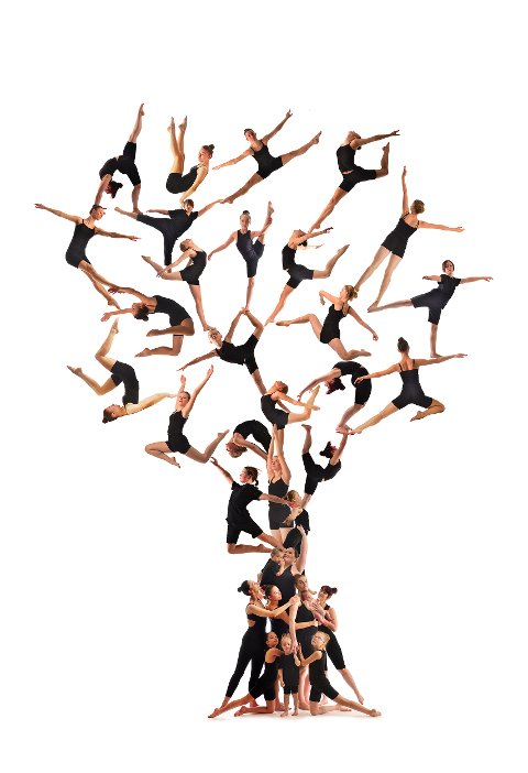 GENERASJONER BYGGER DANSEHISTORIE: Til årets juleforestillingsplakat har Tip Toe Dansestudio et fotografi av dansere som former et tre.