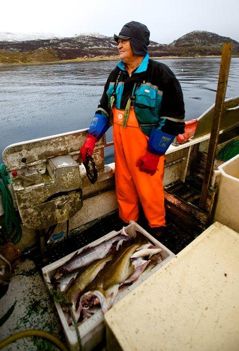 50-60 kilo er ikke allverden, men det fyller en av fiskekassene på dekk.