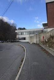 Vikariat: Det skal ansettes en avdelingsleder ved Birkenlund skole.