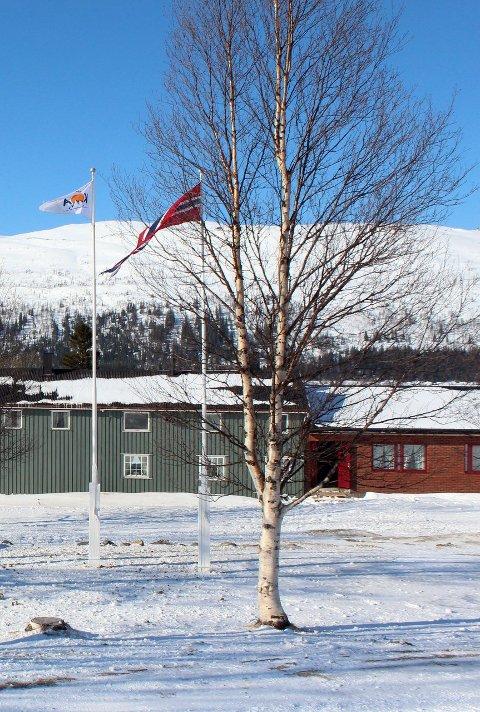 Børgefjellskolen: Grane spiller inn skolen som mulig flyktningmottak.