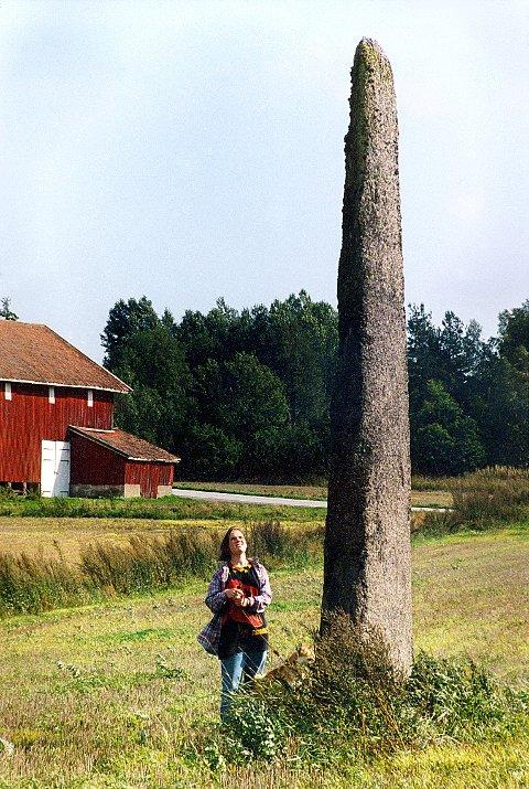 HASLESTEINEN like ved Rv 303 gjennom Tjølling er en av de høyeste oldtidsbautaer på Østlandet.