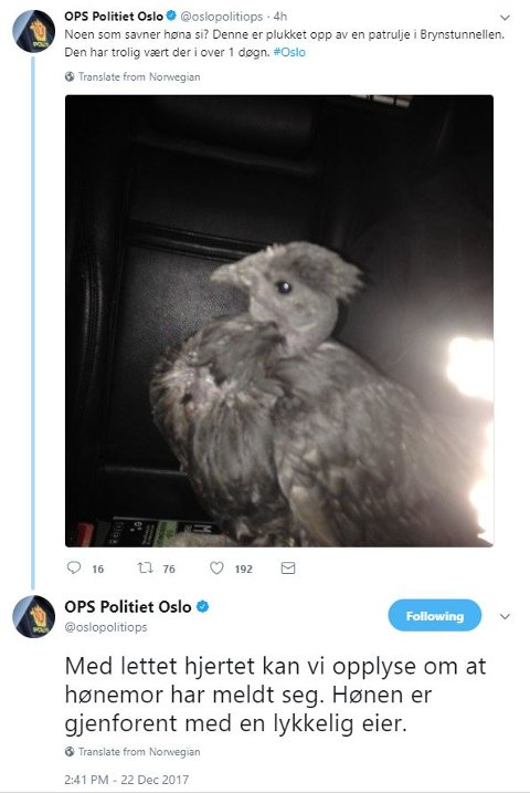 Politets twitring og avisskriverier førte til at høna kom hjem igjen. Foto: Skjermdump