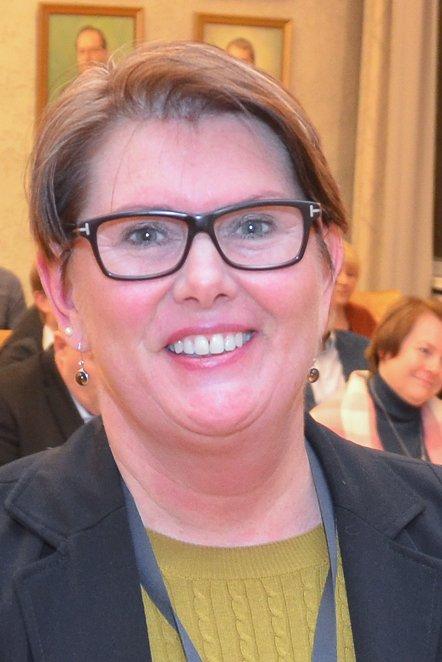 I KOMMUNESTYRET: Avdelingsdirektør i Statens vegvesen Aud M. Riseng, her i kommunestyret i Elverum, utreder gjerne omkjøringsveg