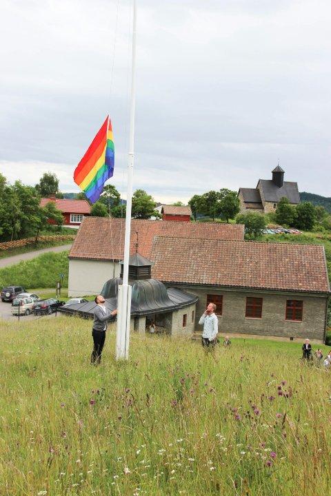 FLAGG: Grunnlovspride for fire år siden på Hadeland Folkemuseum.