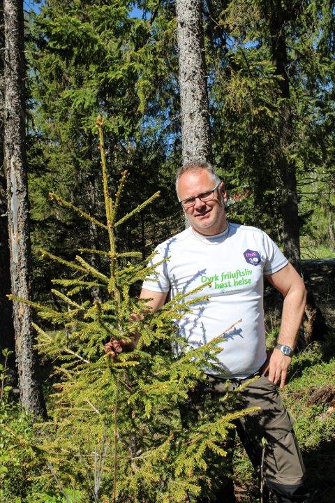 Bjørn Ivar Lamo vil pleie skogen ved å la de unge trærne vokse.