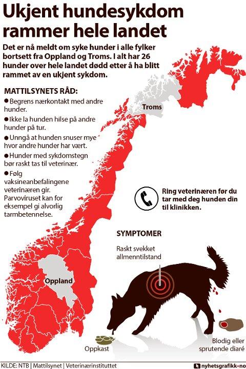 Det er nå meldt om syke hunder i alle fylker bortsett fra Oppland og Troms. I alt har 26 hunder over hele landet dødd etter å ha blitt rammet av en ukjent sykdom.