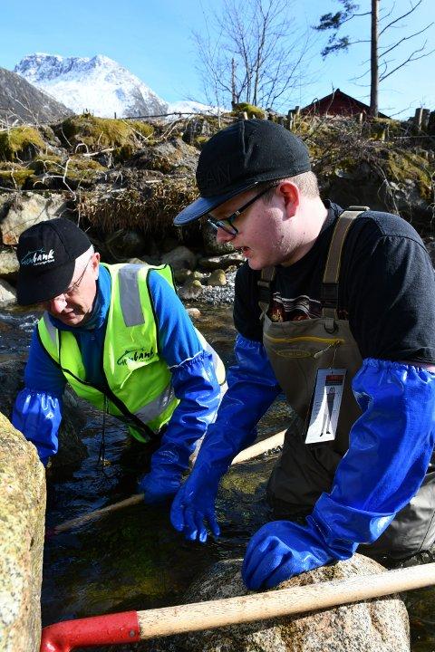 GYTEGROPER: Sven-Helge Pedersen hjelper Lars Erik Skåtun å grava djup nok grop i elvebotnen, før egga kan setjast ut.