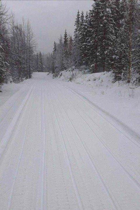 MYREFYTJÅN: I de høyere trakter i Husvolldalen ved Atrå er det også meldt om fine forhold og 4 kilometer oppkjørt veg.