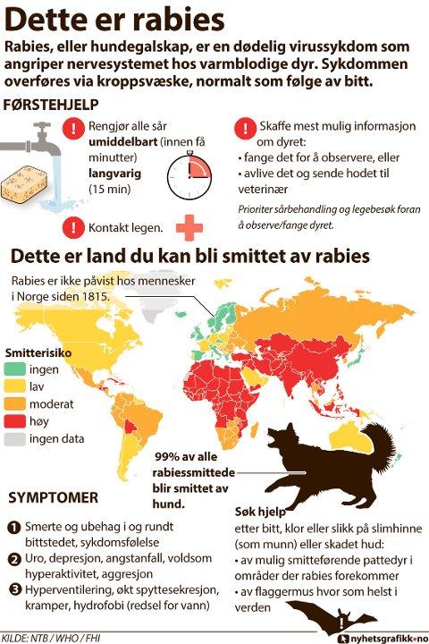 Rabies eller hundegalskap, er en dødelig virussykdom som angriper nervesystemet hos varmblodige dyr. Sykdommen overføres via kroppsvæske, normalt som følge av bitt.