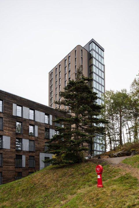 VANT: Tårnet i Halden, som er den nye studentboligen på Remmen, vant i august pris for månedens trebygg.