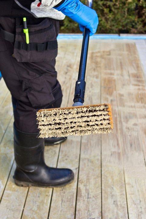Hold overflaten fuktig i cirka et kvarters tid, og skrubb deretter treverket godt med en stiv kost som dyppes i kaldt vann.