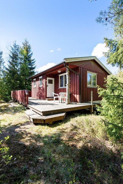SKOG: Den lille hytta har stor terrasse med gode solforhold, og skogen rett utenfor døra. Sveip videre for flere bilder.