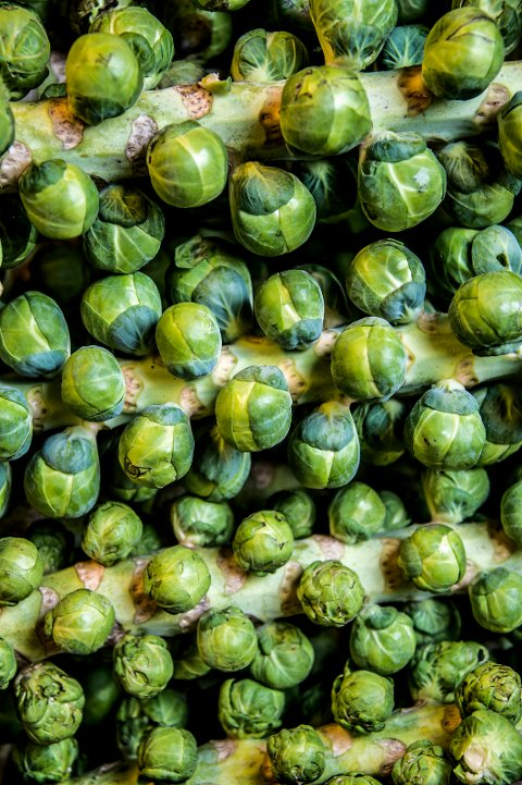 Rosenkål, Ek gårdskjøkken