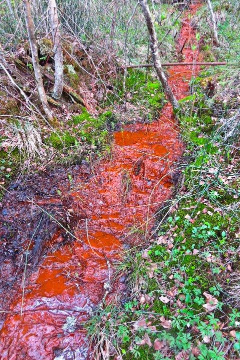 Omfattende forurensing fra gamle septiktanker ved Labro