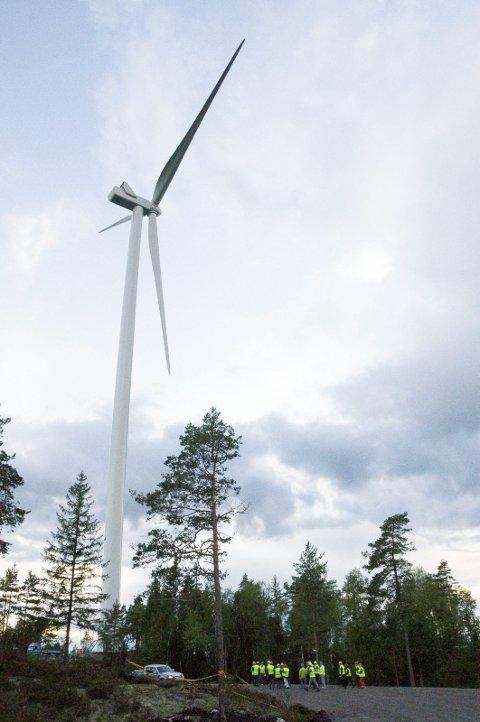 VINDPARK: Marker-politikere var i 2014 på befaring til første etappe av utbyggingen ved Årjäng.
