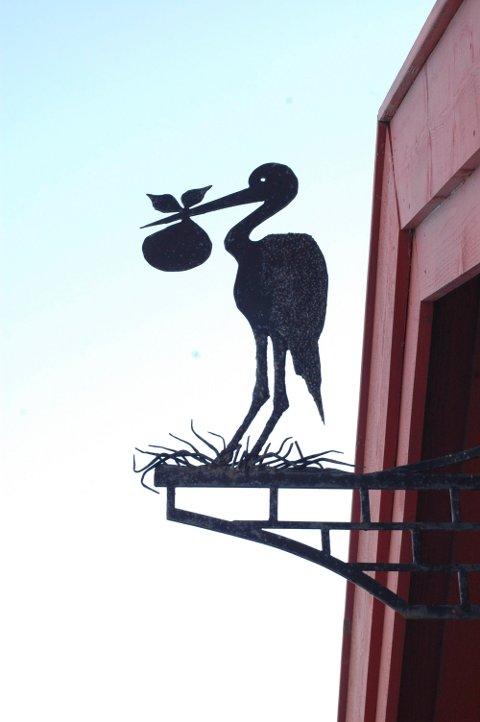 Mindre aktiv: Storken er ikkej like aktiv som før. Det blir født færre ungar i Valdres.