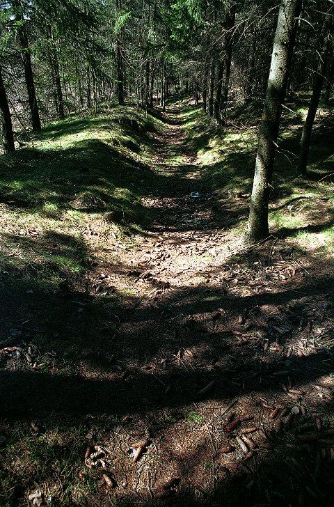 BOMMESTAD VEIMINNE. De eldste veisporene i Bommestad Veiminne er hulveiene fra oldtiden, som denne like sør for Bommestad skole.