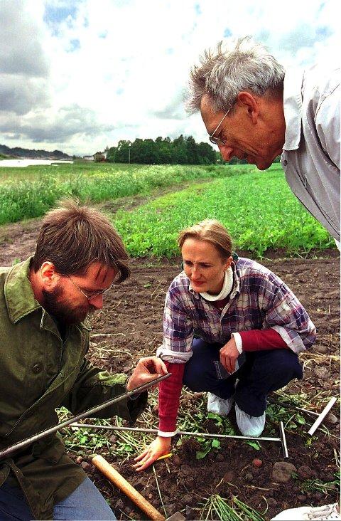 Skatter i jorden: Arkeologer i arbeid på Kaupang. Fortsatt er det spennende skatter å finne i jorden her.