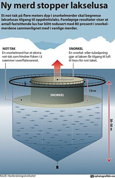 Grafikk som viser korleis norkelmerden er konstruert. I prinsippet blir lakelusa stengt ute frå dei øverste 10 meterane av merda ved hjelp av ein presenningvegg.