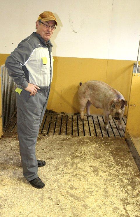Slaktet: Bonde Odd Jacob Walstad var vert for RB-grisen Konrad og årets førjulskonkurranse. foto: KJELL AASUM