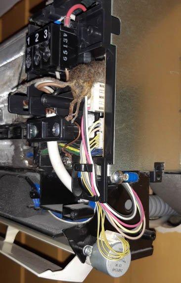 Dette synet møtte reparatøren da han skulle sjekke varmepumpa.