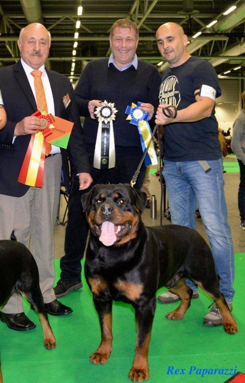 Best i rase:Fra venstre: Dommer Ramon Podesta (Chile)  2. eier Rune Østensen  (Rakkestad).   3.  oppdretter Igor Roganovic ( Kennel Roganland .  Serbia) m/ beste Rottweiler  BENITO ROGANLAND.