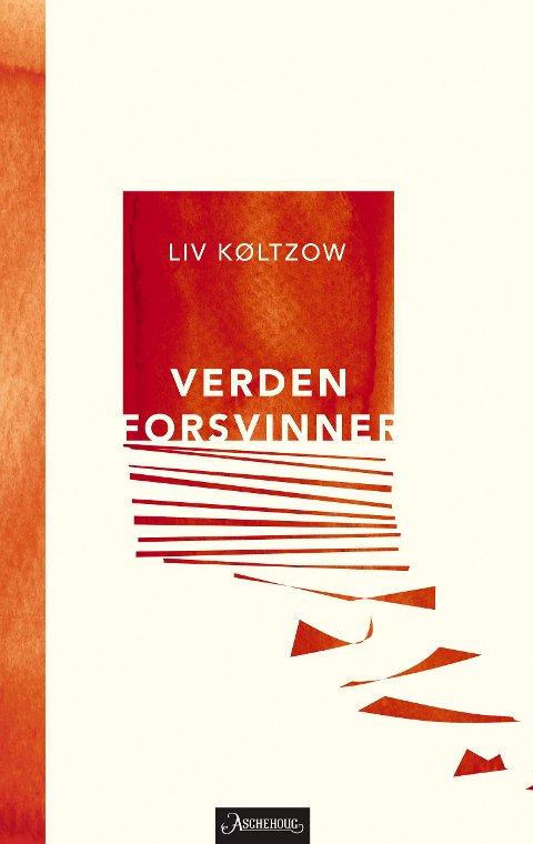 VERDEN FORSVINNER: «Verden forsvinner» av Liv Køltzow.