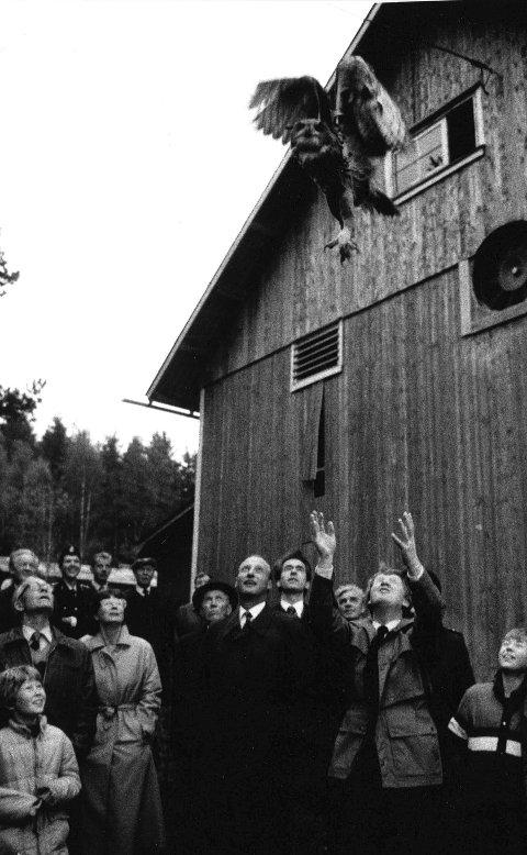 Fri fugl: Interesserte tilskuere med Kronprins Harald i spissen følger med i det prosjektleder Ole H. Stensrud kaster hubroen i været slik at den kan få luft under vingene og starte flukten.Arkivfoto: Arild Brunvand
