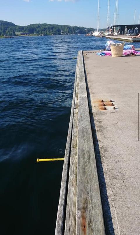 Knut Christian Hallan, styremedlem i Soon Water Kystlag, sier skruene stakk anslagsvis 15 centimeter ut fra bryggekanten.
