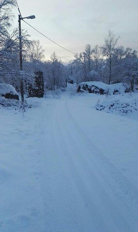 Norsk Folkehjelp Strand og Forsand kjørte mandag opp skispor. (Foto: NF Strand og Forsand)