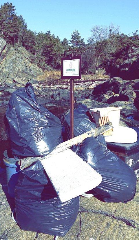 Miljøforurensning: Folk dumper søppel i naturen, men det kan koste dem dyrt hvis de blir oppdaget. Bildet er kun en illustrasjon og viser ikke søppelet i den aktuelle saken. Arkivfoto