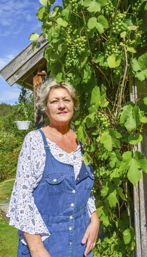 Druedyrker: Tone Erichsen Aasbø får rekordavling i årets druehøst på Fosstveit.Foto: Mette Urdahl