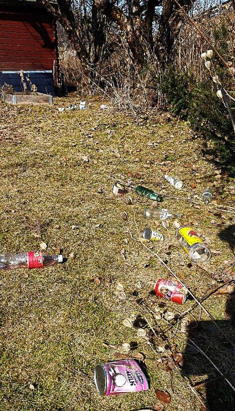 KASTET INN I HAGEN: Slik ser det i hagen etter at bilister har kastet søppel ut vindut, sier Ole Kobberstad.