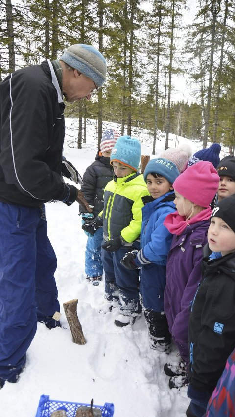 BARKEBILLER: Helge Midttun forteller om barkebiller og elever fra Solvang ser på.