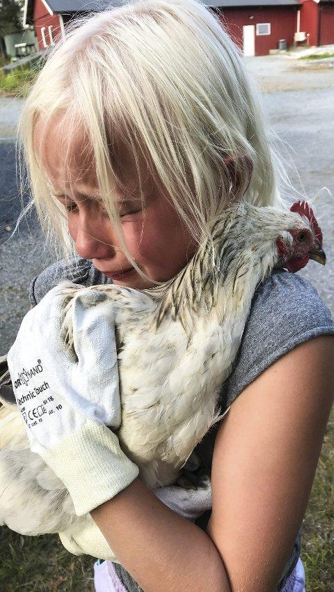 HVA SER DU? – Jeg kan ikke skjerme ungen min fra hva folk måtte mene om at hønene hjemme etter hvert blir mat, men jeg kan lære henne håndtere det, skriver Stenbock-Haakestad. Foto: PRIVAT