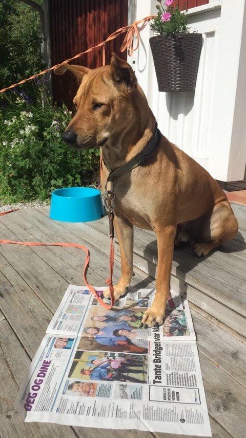 Theo er også en ivrig Indre-leser.